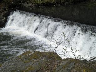 BotanicalGarden.Waterfall 4.21.16