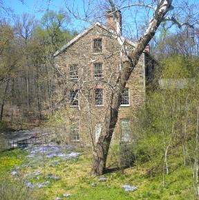 BotanicalGardens.Lorelei Mansion
