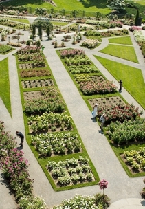BotanicalGardens.PeggyRooseveltRoseGardens