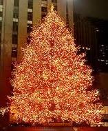 treasury-christmas-tree-rockefeller-center