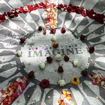 imaginestrawberryfields-12-8