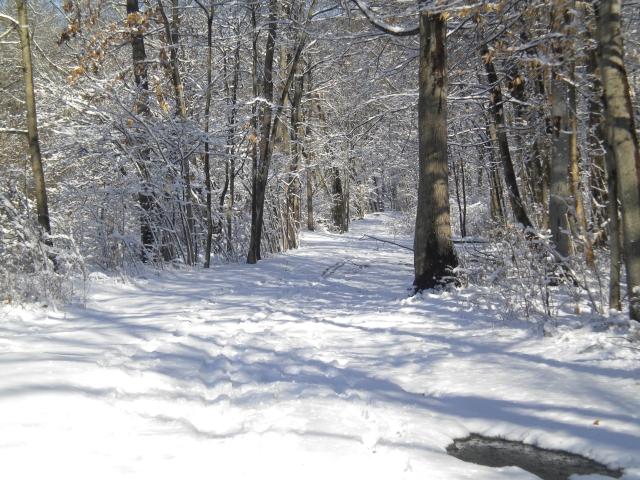 winter-bronxriverpkwy-walkway