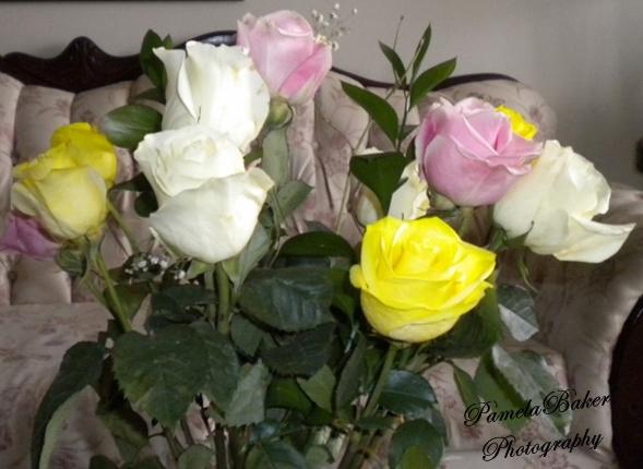 Birthday Roses.watermarked 3.23.17