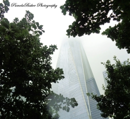 WorldTradeCenter.FreedomTower.Trees.Fog.watermarked 8.7.17
